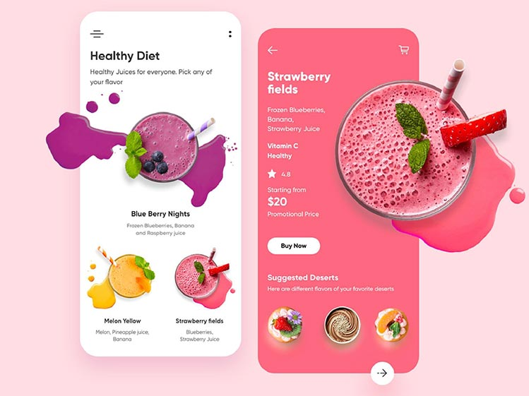 Diet Application Design and Development